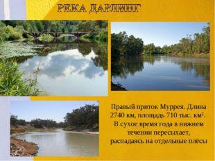 . Правый приток Муррея. Длина 2740 км, площадь 710 тыс. км2. В сухое время го