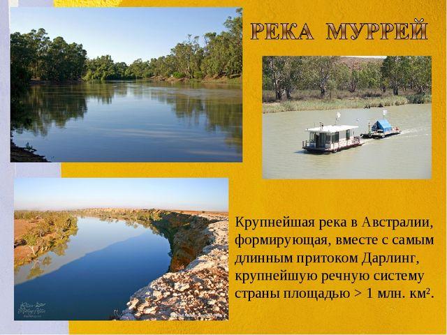 . Крупнейшая река в Австралии, формирующая, вместе с самым длинным притоком Д...