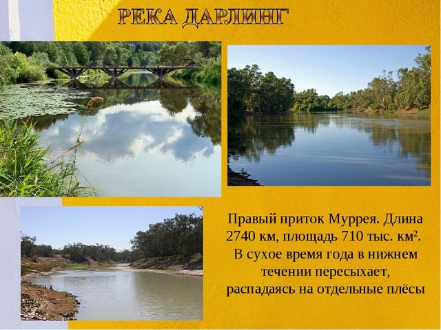 . Правый приток Муррея. Длина 2740 км, площадь 710 тыс. км2. В сухое время го...