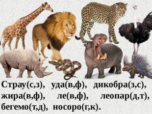 Страу(с,з), уда(в,ф), дикобра(з,с), жира(в,ф), ле(в,ф), леопар(д,т), бегемо(т
