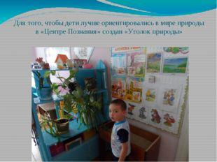 Для того, чтобы дети лучше ориентировались в мире природы в «Центре Познания»