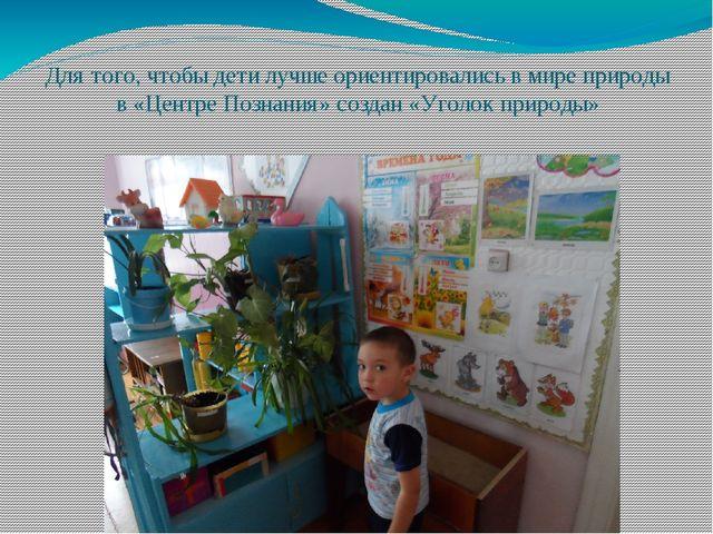 Для того, чтобы дети лучше ориентировались в мире природы в «Центре Познания»...