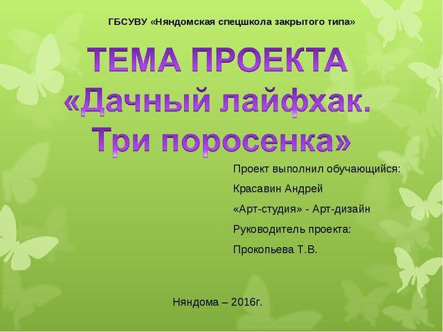 ГБСУВУ «Няндомская спецшкола закрытого типа» Проект выполнил обучающийся: Кра...