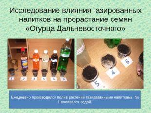 Исследование влияния газированных напитков на прорастание семян «Огурца Дальн