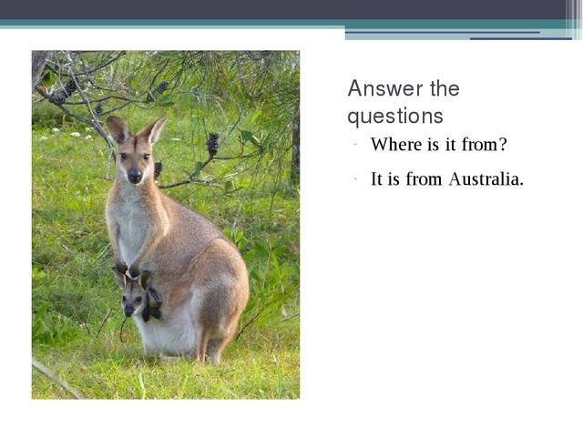 Answer the questions Where is it from? It is from Australia.