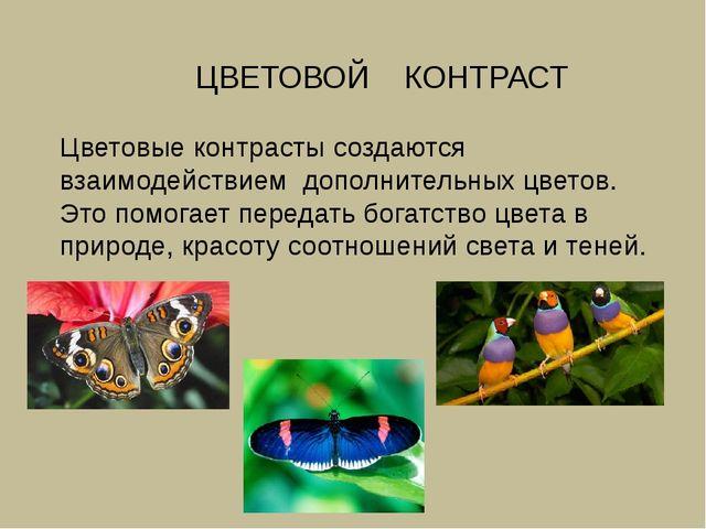 ЦВЕТОВОЙ КОНТРАСТ Цветовые контрасты создаются взаимодействием дополнительны...