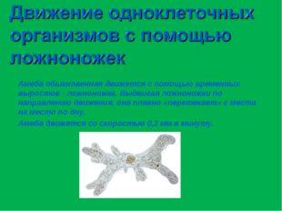 Амеба обыкновенная движется с помощью временных выростов - ложноножек. Выдвиг