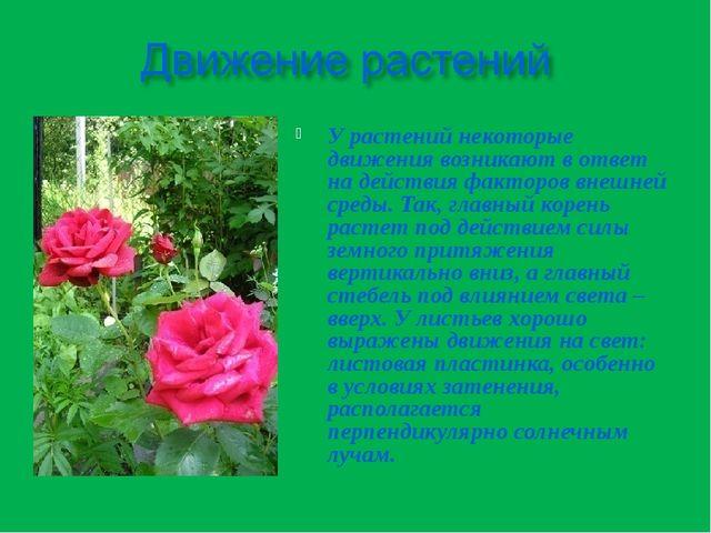У растений некоторые движения возникают в ответ на действия факторов внешней...