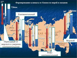 Континентальный Формирование климата от близости морей и океанов -3° 750мм -1