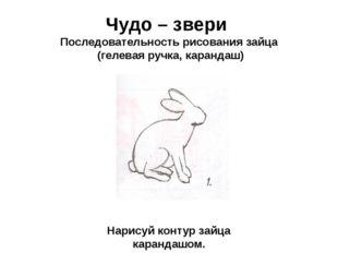 Чудо – звери Последовательность рисования зайца (гелевая ручка, карандаш) Нар