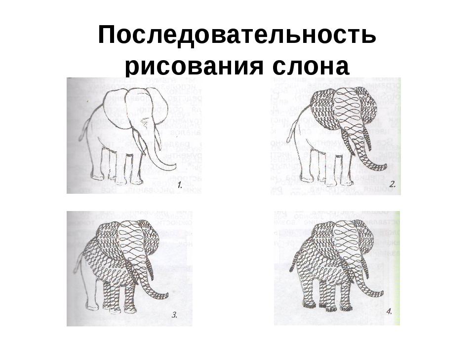 Последовательность рисования слона