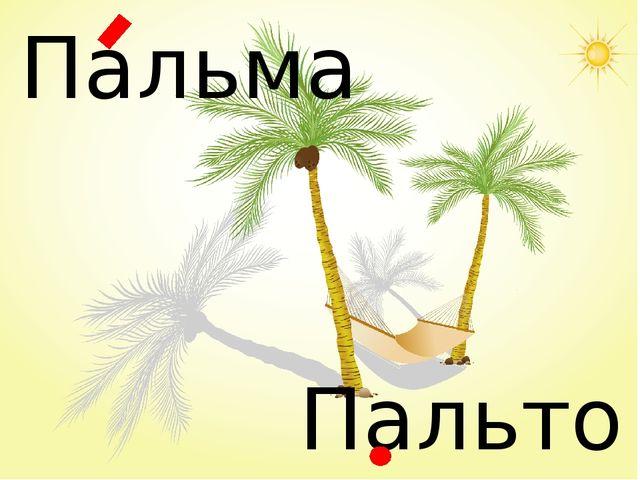 Пальма Пальто