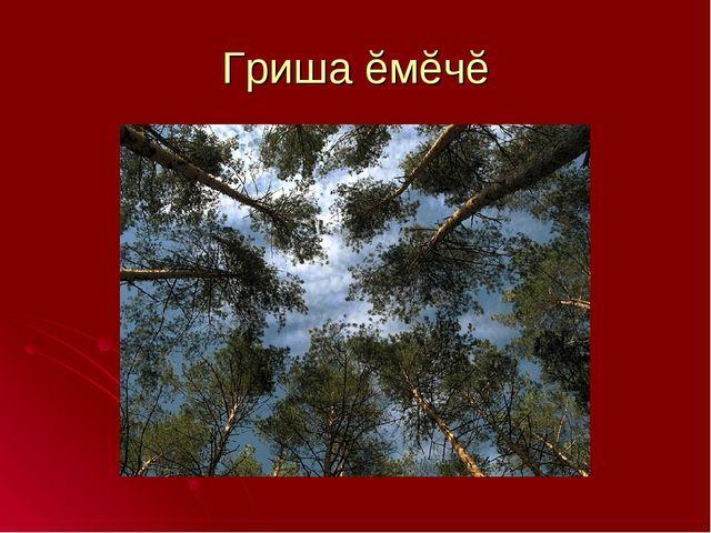 Гриша ĕмĕчĕ