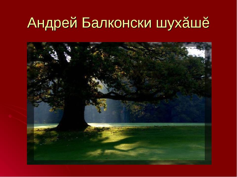 Андрей Балконски шухăшĕ