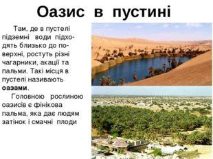 Оазис в пустині Там, де в пустелі підземні води підхо- дять близько до по-ве