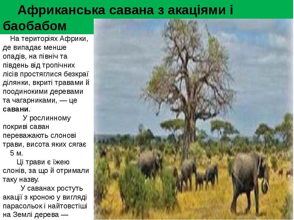 Африканськасаваназ акаціями і баобабом На територіях Африки, де випадає м...