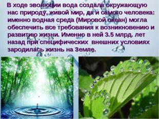 В ходе эволюции вода создала окружающую нас природу, живой мир, да и самого
