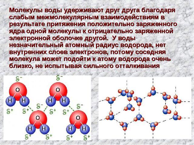 Молекулы воды удерживают друг друга благодаря слабым межмолекулярным взаимод...