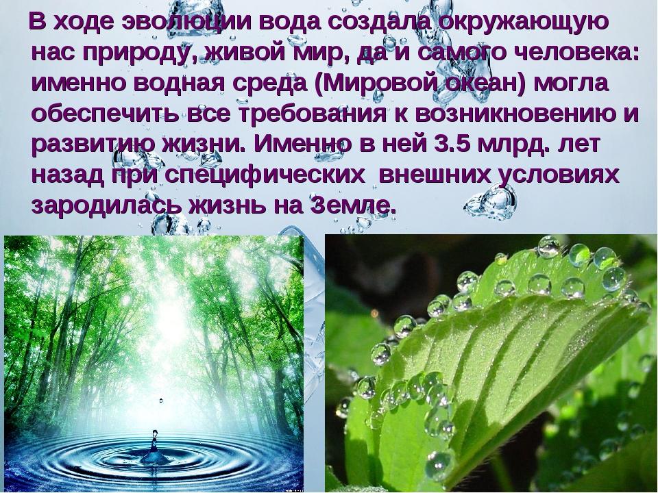 В ходе эволюции вода создала окружающую нас природу, живой мир, да и самого...