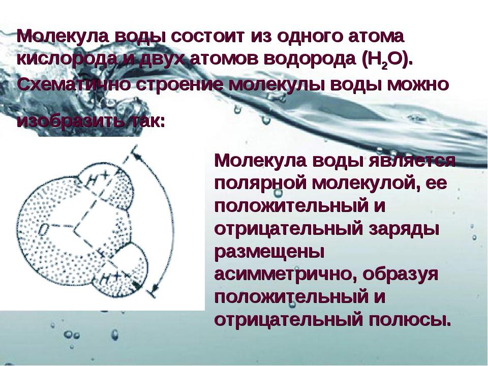 Молекула воды состоит из одного атома кислорода и двух атомов водорода (H2O)....