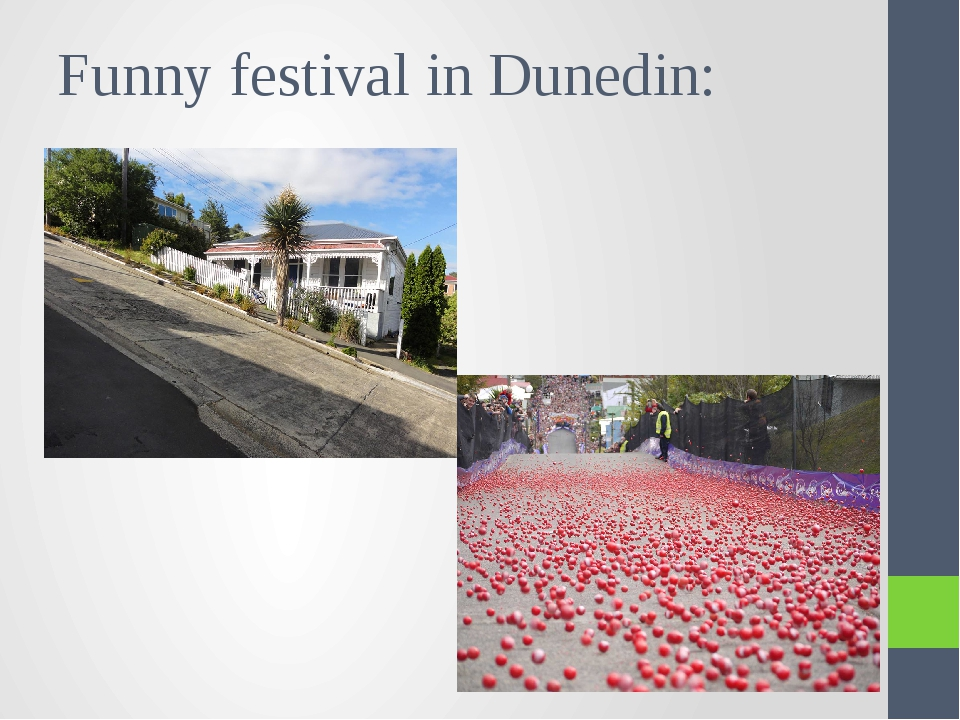Funny festival in Dunedin: