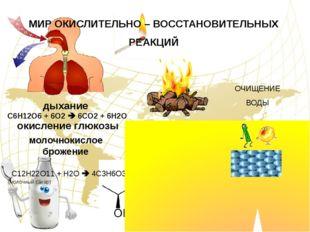 горение МИР ОКИСЛИТЕЛЬНО – ВОССТАНОВИТЕЛЬНЫХ РЕАКЦИЙ дыхание окисление глюкоз
