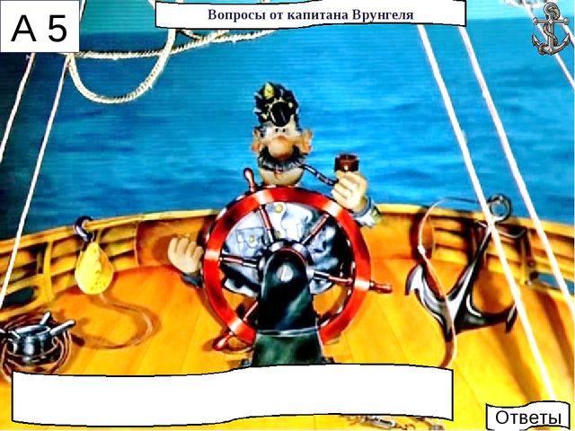 * Вопросы от капитана Врунгеля А 5 Ответы