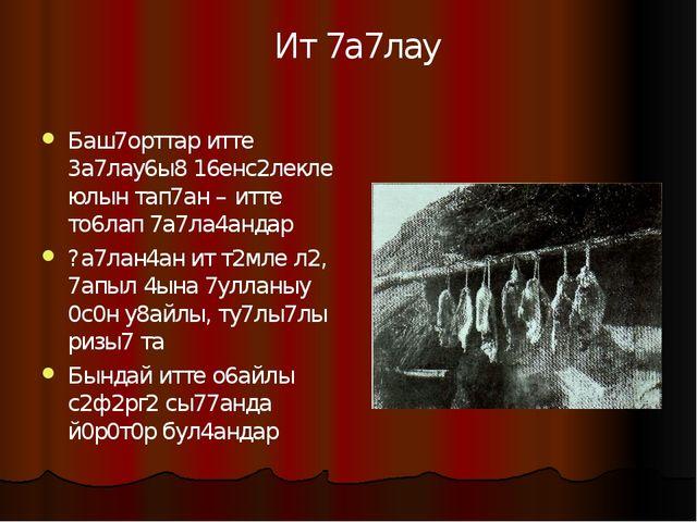 Баш7орттар итте 3а7лау6ы8 16енс2лекле юлын тап7ан – итте то6лап 7а7ла4андар ?...