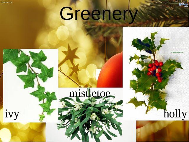 Greenery holly mistletoe ivy