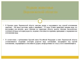 Редкие животные Воронежской области В Красную книгу Воронежской области занес