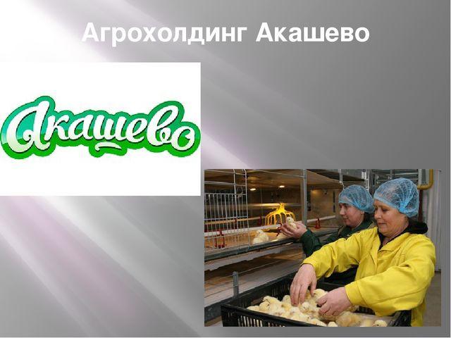 Агрохолдинг Акашево