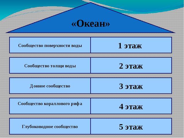 «Океан» Сообщество поверхности воды 1 этаж Сообщество толщи воды 2 этаж Донно...