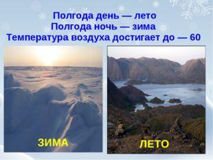 ЗИМА Полгода день — лето Полгода ночь — зима Температура воздуха достигает д
