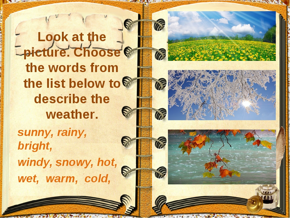 Look at the picture. Choose the words from the list below to describe the we...