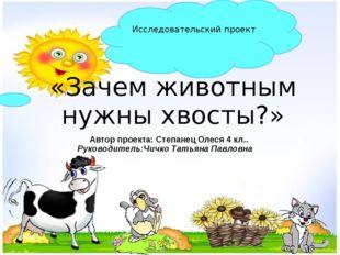 «Зачем животным нужны хвосты?» Исследовательский проект Автор проекта: Степан