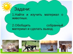 Задачи: 1.Найти и изучить материал о животных. 2.Обобщить собранный материал