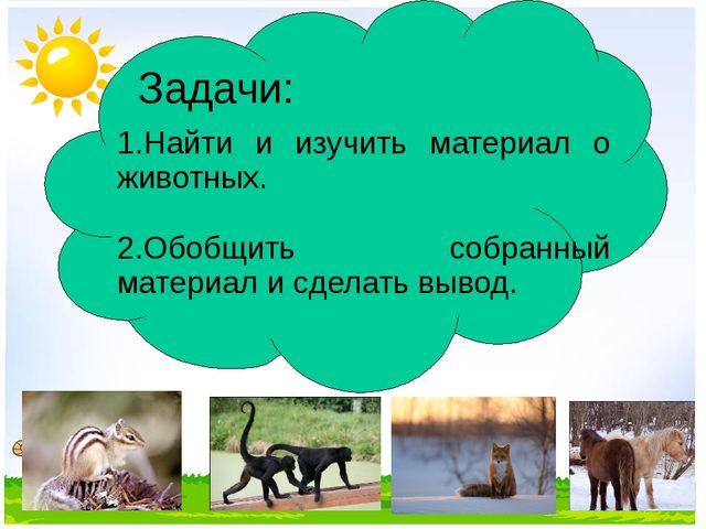 Задачи: 1.Найти и изучить материал о животных. 2.Обобщить собранный материал...