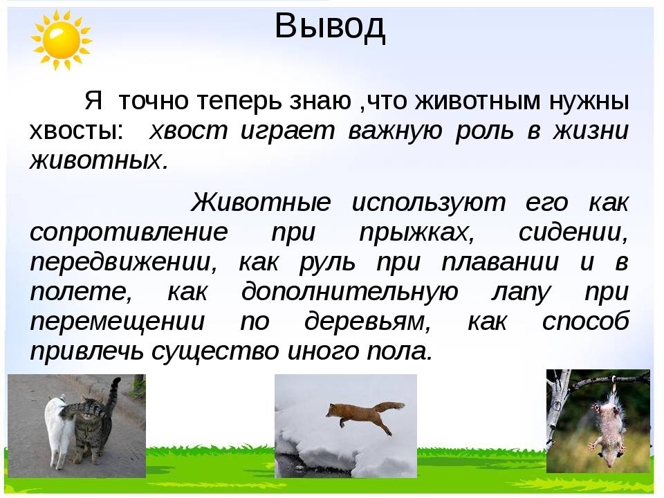 Вывод Я точно теперь знаю ,что животным нужны хвосты: хвост играет важную рол...