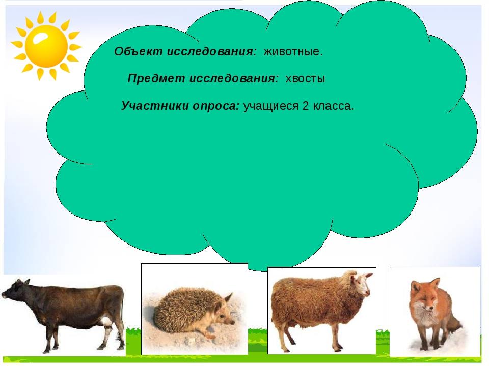 Объект исследования: животные. Предмет исследования: хвосты Участники опроса...