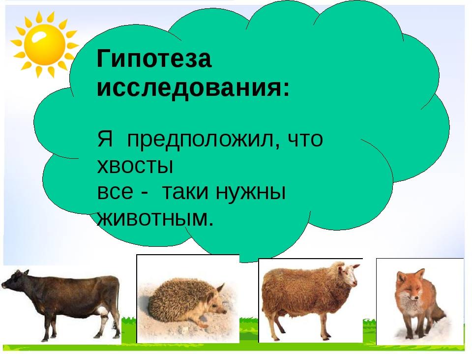 Гипотеза исследования: Я предположил, что хвосты все - таки нужны животным.