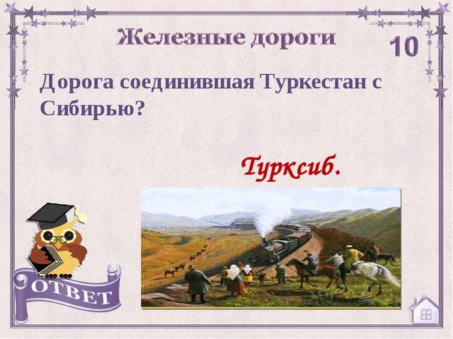 Турксиб. Дорога соединившая Туркестан с Сибирью?