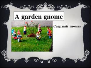 A garden gnome Садовый гномик