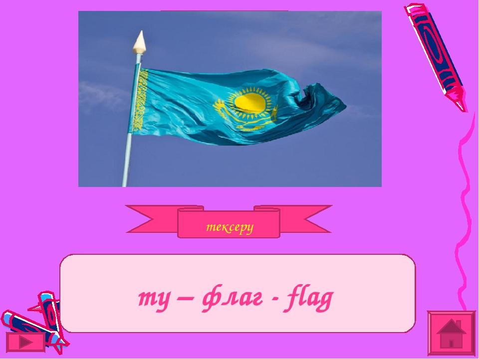 тексеру Задание ту – флаг - flag