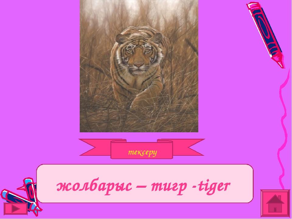 тексеру Задание жолбарыс – тигр -tiger
