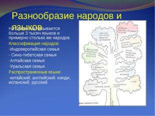 Разнообразие народов и языков. На Земле насчитывается больше 3 тысяч языков и