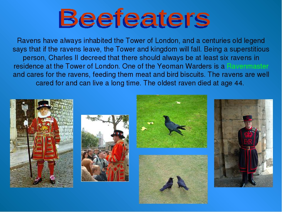 Ravens have always inhabited the Tower of London, and a centuries old legend...