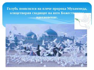 Голубь появлялся на плече пророка Мухаммеда, олицетворяя сходящее на него Бож