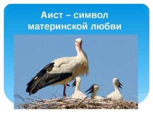 Аист – символ материнской любви