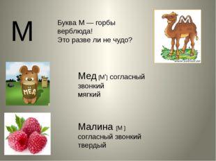 М Буква М — горбы верблюда! Это разве ли не чудо? Мед [М'] согласный звонкий