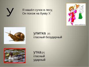 У утка [У] гласный ударный улитка [У] гласный безударный Я нашёл сучок в лесу